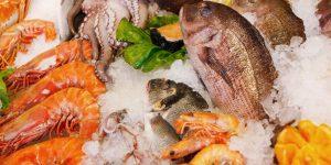 pesci2-pescheria-stelle-di-mare-italyra