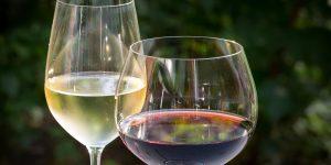 gallery3-Sagra del vino