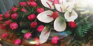 la-magnolia-italyra-gallery3